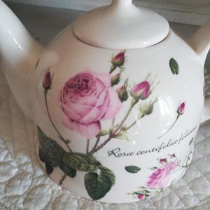 Théière , Tisanière au décor Rose de Redouté